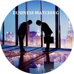 Business matching service