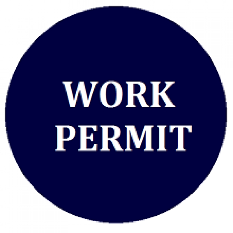 Vietnam Work Permits Application Service