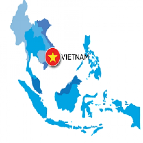 Overview of the Vietnamese economy
